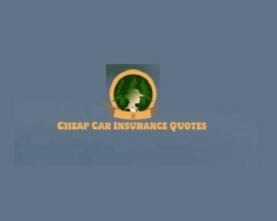 Creative Cheap Car Insurance Buffalo NY