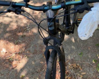 Bike - Giant 24