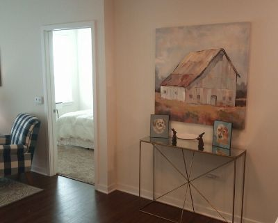 Modern full amenities 2 bed/2 bath apt w/ pool, work space, fitness, allow pets. - Northbrook