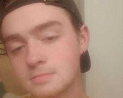 Ripken, 20 years, Male - Looking in: Newport News Newport News city VA