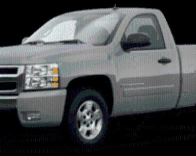 2008 Chevrolet Silverado 1500 WT