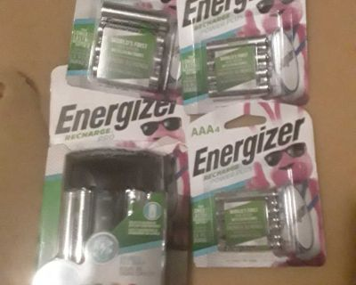 Rechargeable batteries with charger