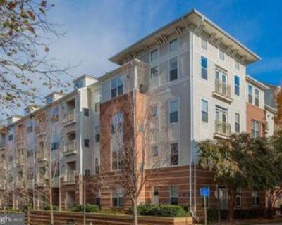 2765 Centerboro Dr, Oakton, VA 22181 2 Bedroom Condo for Rent for $2,100/month