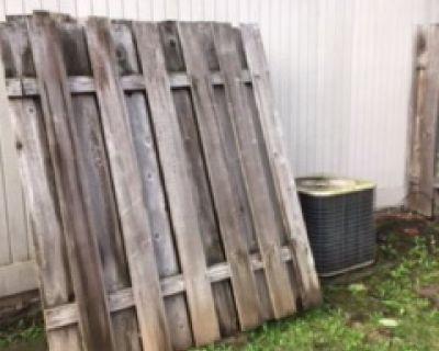 Free Cedar Fence Panels, approx. 6 x 6 ft