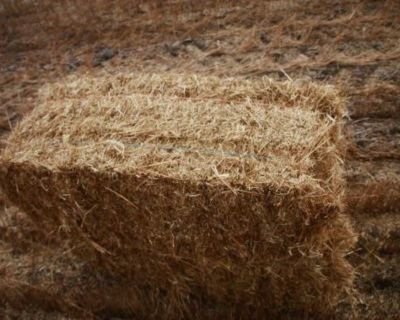 ISO Flax bales