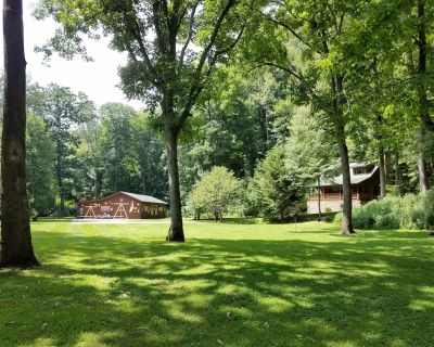 Mountainside cabin along the Pigeon River - Canton
