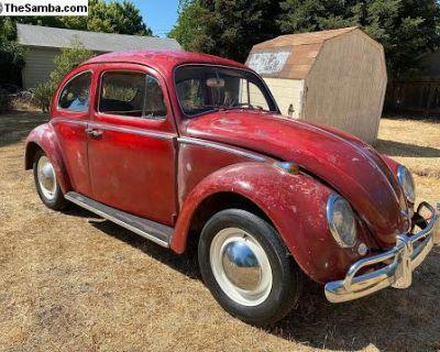 1964 VW Volkswagen Patina Bug. Runs and Drives!