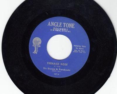 VIC DONNA & PARAKEETS ~ Teenage Rose*Mint-45 !