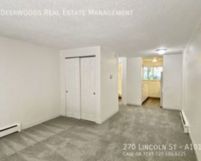 270 N Lincoln St #A101, Denver, CO 80203 Studio Apartment