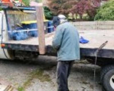 1 Ton Small Log truck