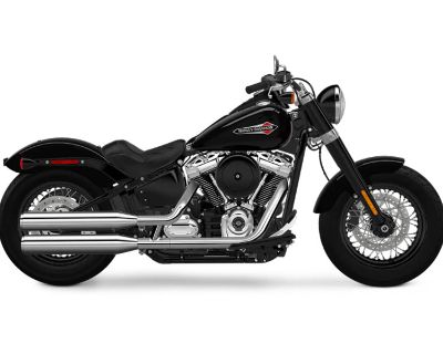 2018 Harley-Davidson Softail Slim 107 Cruiser Houston, TX