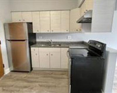 1117 East Roosevelt Road - 5 #5, Wheaton, IL 60187 1 Bedroom Apartment