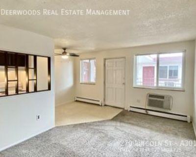 270 N Lincoln St #A301, Denver, CO 80203 1 Bedroom Apartment