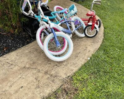 2 girls bikes and tricycle