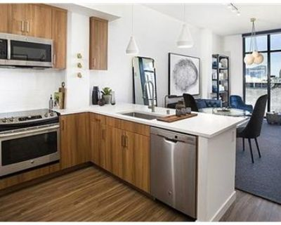 Wicker Park 3 Bedroom - Pool, Gym and More $3295