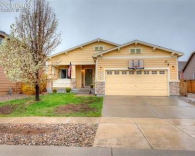 6554 Thistlewood St, Colorado Springs, CO 80923 4 Bedroom Apartment
