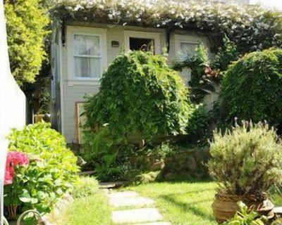 Best Central San Francisco Hidden Gem Luxury Cottage, Superb Location/Amenities - Pacific Heights