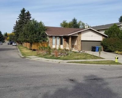 Newly renovated and furnished bungalow - Southwest Calgary