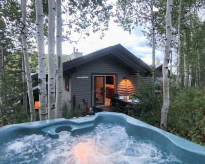 SANITIZED-Stylish Deer Valley Retreat Sleeps 10 w/Private HOT TUB and Stunning V - Deer Valley