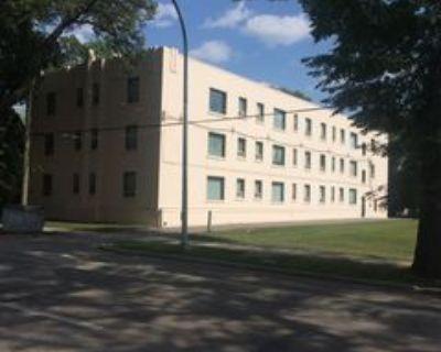 438 Assiniboine Avenue #14, Winnipeg, MB R3C 0Y4 2 Bedroom Apartment