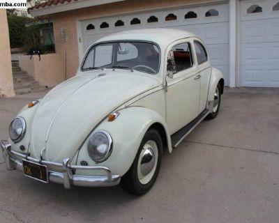 1963 Volkswagen Beetle VW Bug