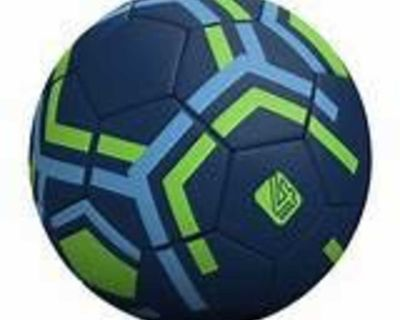 ISO Size 4 Soccer Ball - Looking for 2
