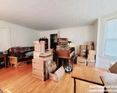 31 June St #1, Boston, MA 02131 1 Bedroom Apartment