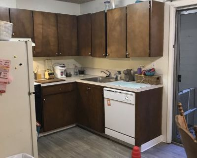 Quiet comfy queer home looking for a roommate