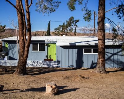 Mid Century Ranch Style Home (Renovated 2018) Only Three Blocks To Downtown JT - Joshua Tree