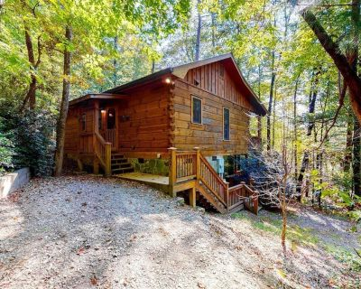 Relaxing, Dog-Friendly Lakefront Cabin w/ Private Hot Tub and Private Gas Grill - Blue Ridge