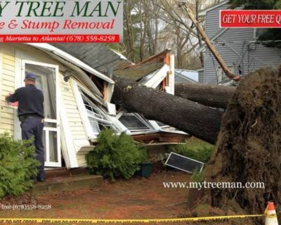 Tree Cutting and Tree Care. Contact Our Team of Experts For a Free Consultation Today. Tree Service
