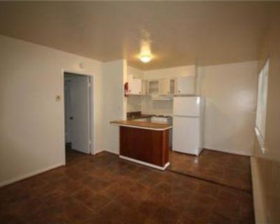 2915 Pleasant Ave #2, Norfolk, VA 23518 1 Bedroom Apartment