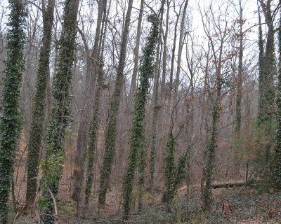 Land for Development in Snellville, Georgia, Ref# 3222907