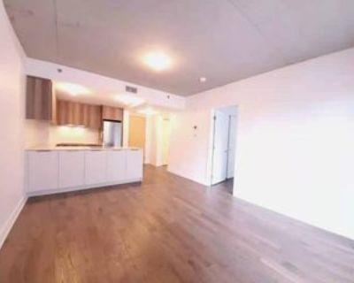 101 Rue Peel, Montr al, QC H3C 0Y1 1 Bedroom Apartment