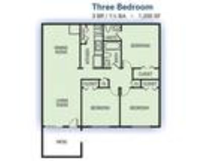 Woods at Southlake Apartment Homes - 3 Bedroom
