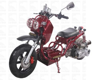 50cc Moped (PMZ50-10) Metallic Burgundy