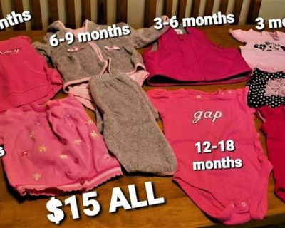 Baby Girls' Clothing LOT (Sizes 0-18 months)