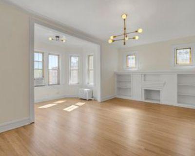 847 S Humphrey Ave, Oak Park, IL 60304 2 Bedroom Condo
