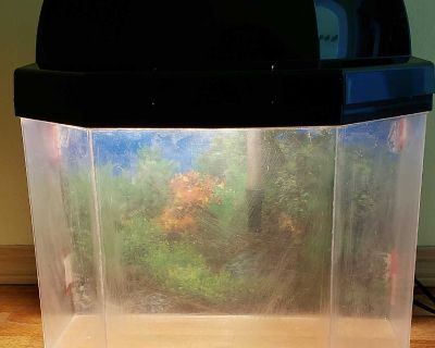 5 Gallon Fish Tank and Filter (for beginners)