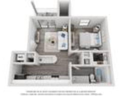 Citrus Apartments - Tangerine - 1 Bedroom