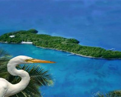 Private Island, Offshore Florida Keys with sandy beach, gardens, boat & dock. - Marathon