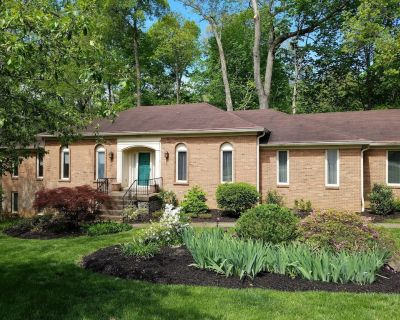 Great for families, groups & corp teams! Private wooded backyard / ample parking - Louisville