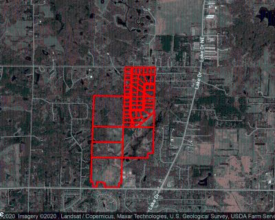 Land for Sale 80 Acres in Lino Lakes