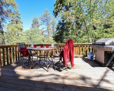Mountain Pines Lodge: Private! Backs to the National Forest! Close the Village! Dog Friendly! - Big Bear Lake