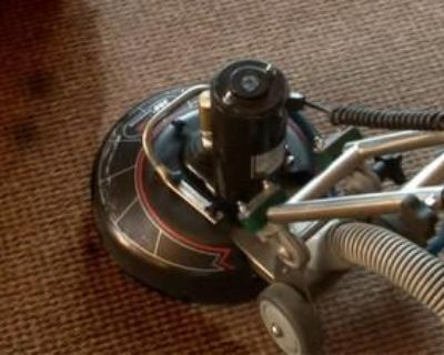 Diamond Shine Carpet & Upholstery Cleaning   Clean Carpets Companies