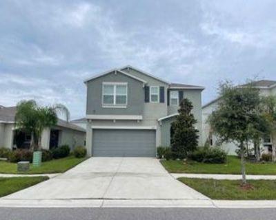 17119 Yellow Pine St, Wimauma, FL 33598 6 Bedroom House