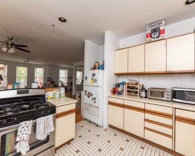 1301 North Hoyne Avenue Chicago, IL 60622 2 Bedroom Apartment Rental