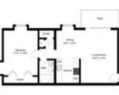 Georgetown Apartments - 1 Bedroom Apartment - Large Living Room