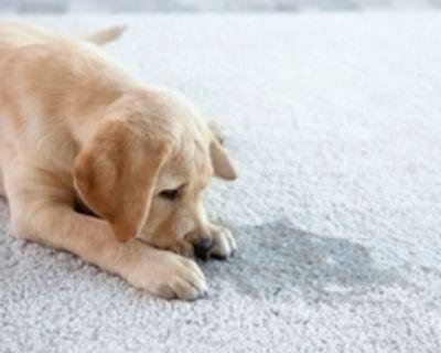 CARPET CLEANING $15 per room. Carpet repairs, restretches. Install carpet, tile,...