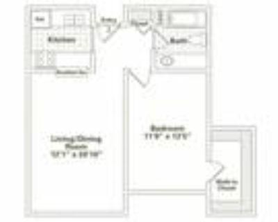 Oak Park City Apartments - One Bedroom, One Bath (A5)